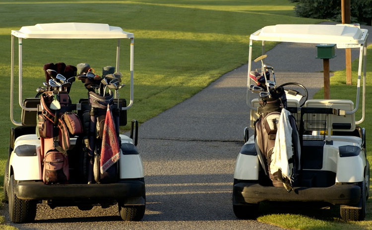 Two golf carts sit on a path